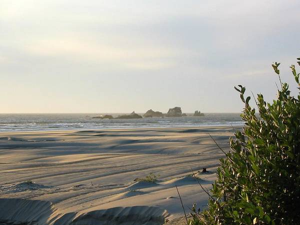 Photo Art Print featuring the photograph Oregon Beach At Dusk by Mirinda Kossoff