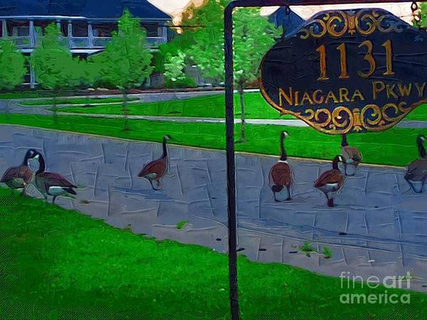 Canadian Geese Art Print featuring the painting Out For A Stroll by Deborah Selib-Haig DMacq