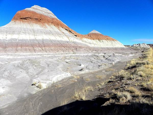 Photograph On Paper Art Print featuring the photograph Painted Desert 6 by Patricia Bigelow