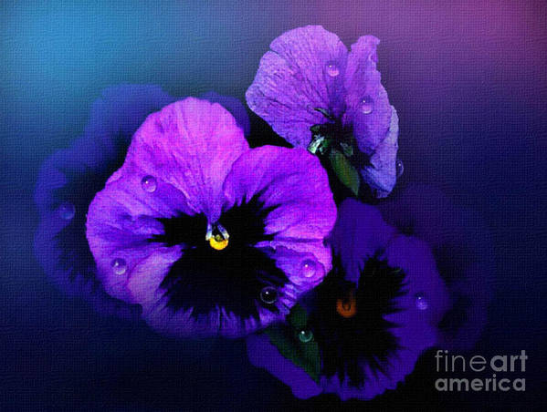 Pansy Art Print featuring the painting Pansys by Robert Foster