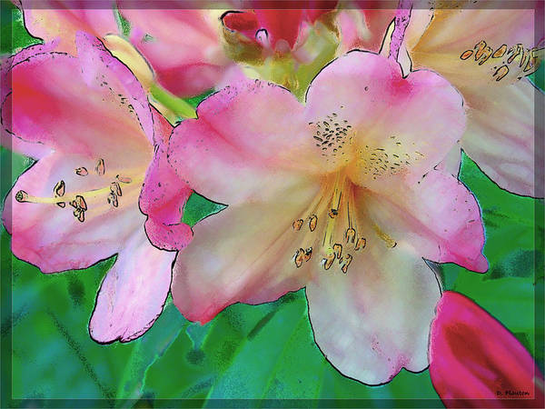 Ebsq Art Print featuring the photograph Pink Azalea by Dee Flouton