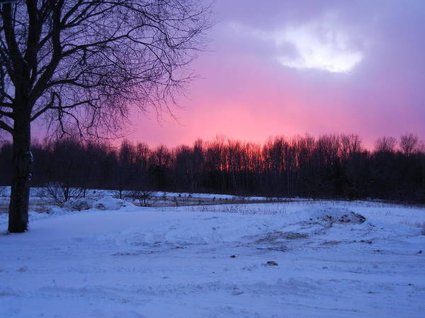 Winter Art Print featuring the photograph Pink Night by Allie Kneidl-Peppers