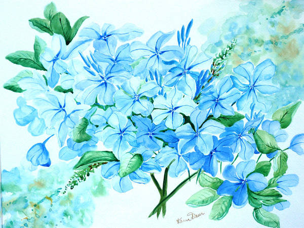 Floral Blue Painting Plumbago Painting Flower Painting Botanical Painting Bloom Blue Painting Art Print featuring the painting Plumbago by Karin Dawn Kelshall- Best