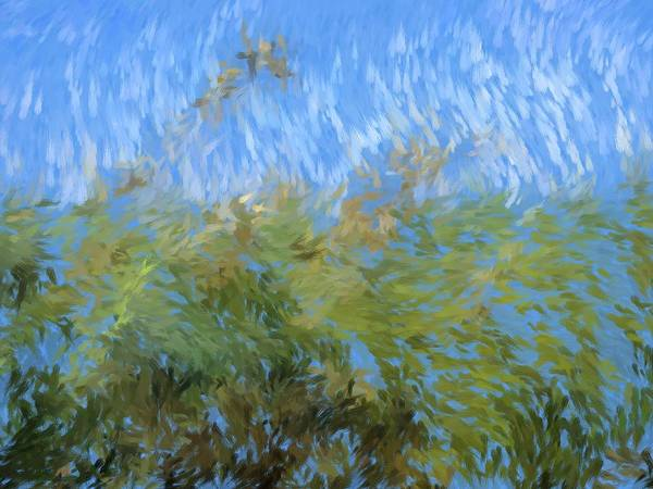Painting Art Print featuring the painting Prairie Impressions by Tingy Wende