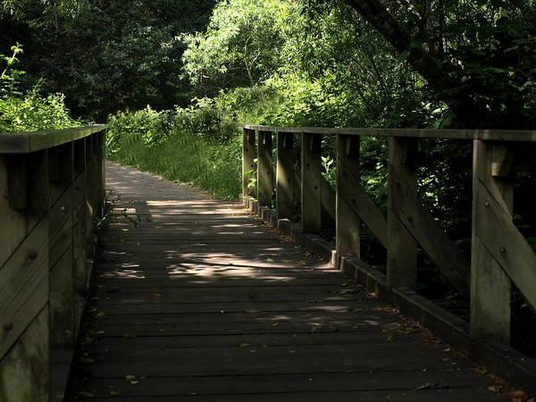 Landscape Art Print featuring the photograph Quiet Path Bridge by Richard Thomas