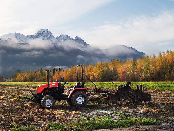 Photography Art Print featuring the photograph Red Tractor In Autumn by Dianne Roberson
