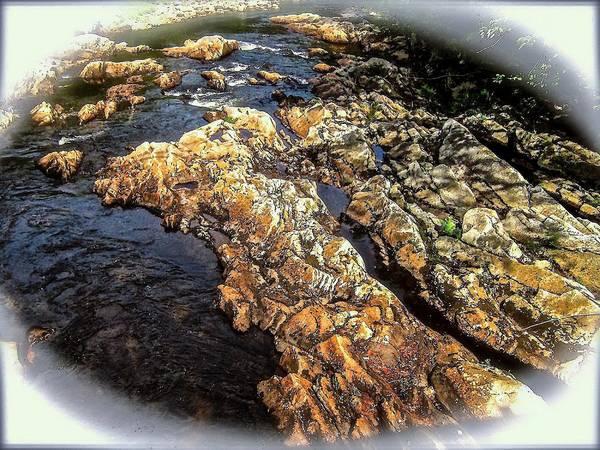 River Art Print featuring the photograph River Rock by Elizabeth Tillar
