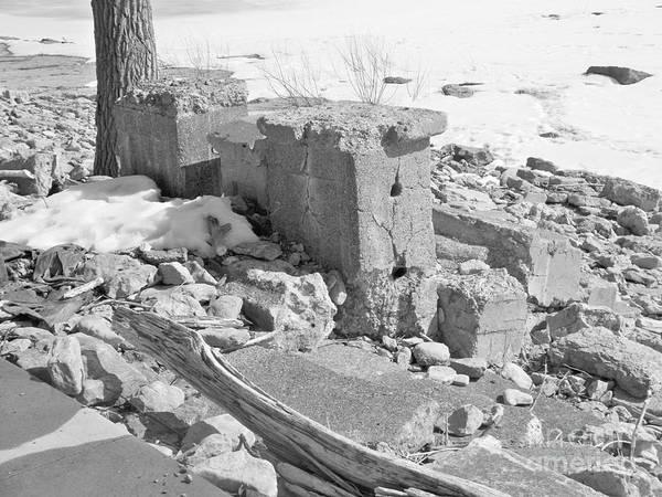 Ruins Of Old Park Amusement Art Print featuring the photograph Ruins by Deborah Selib-Haig DMacq