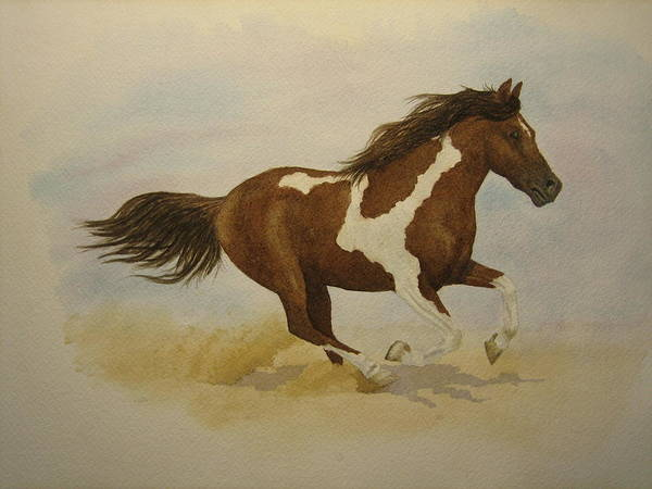 Paint Horse Art Print featuring the painting Running Paint by Jeff Lucas