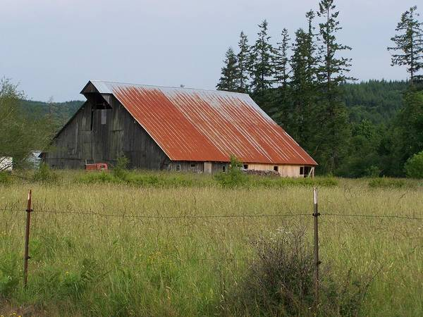 Rusty Art Print featuring the photograph Rusty Roofed Barn  Washington State by Laurie Kidd