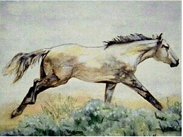 Quarter Horse Art Print featuring the painting Sage Runner by Debra Sandstrom