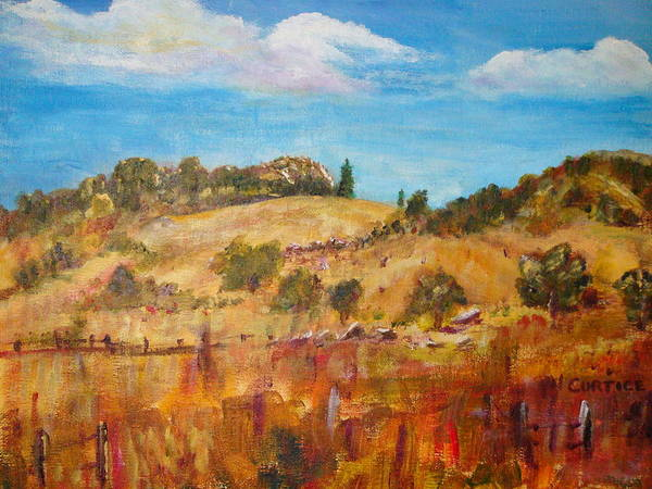 Landscape Art Print featuring the painting San Diego Backcountry by Carolyn Curtice