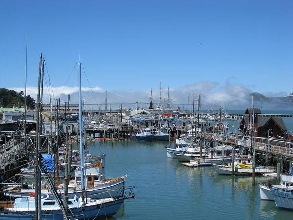Water Art Print featuring the photograph San Francisco Fishing Fleet by Jerry Patchin