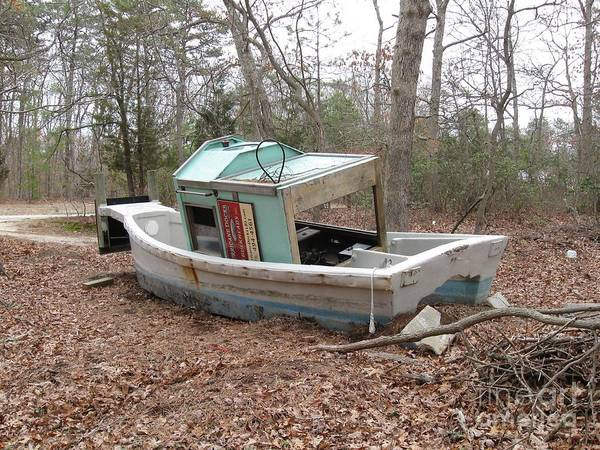 Landscape Art Print featuring the photograph Shipwrecked In The Pinelands by Amanda Lenard