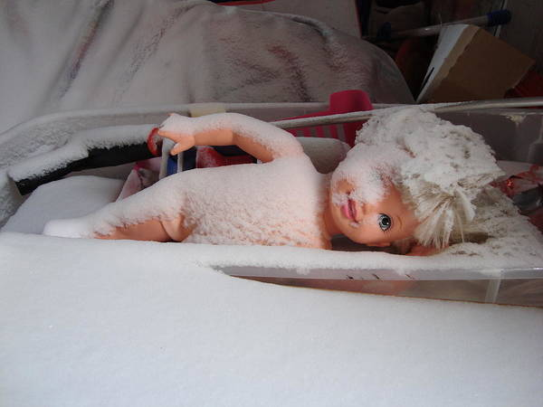 Doll Art Print featuring the photograph Snow Baby by Crescentia Mello
