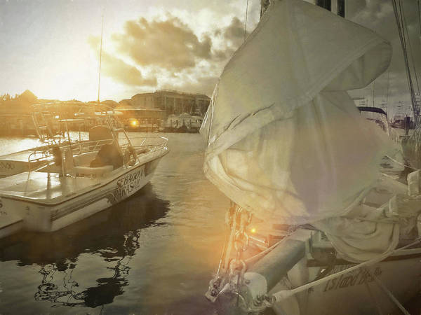 Miami Art Print featuring the photograph Southern Winds by JAMART Photography