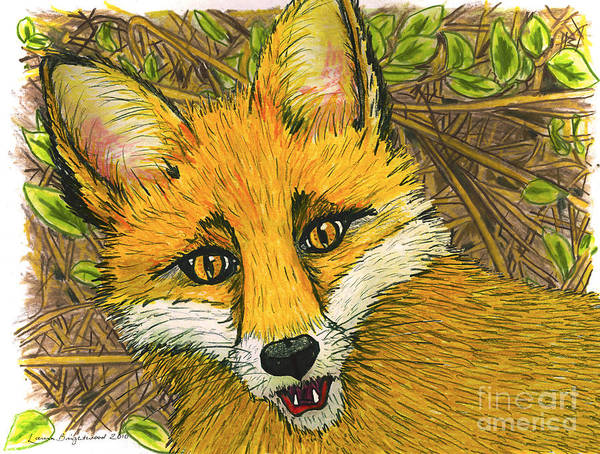 Fox Art Print featuring the drawing Speaking Fox by Laura Brightwood