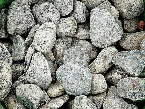 Pebble Art Print featuring the photograph Stones 2 by Dorothy Berry-Lound
