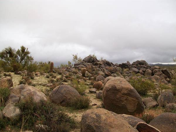Desert Art Print featuring the photograph Storm On The Horizon by Jena Gillam