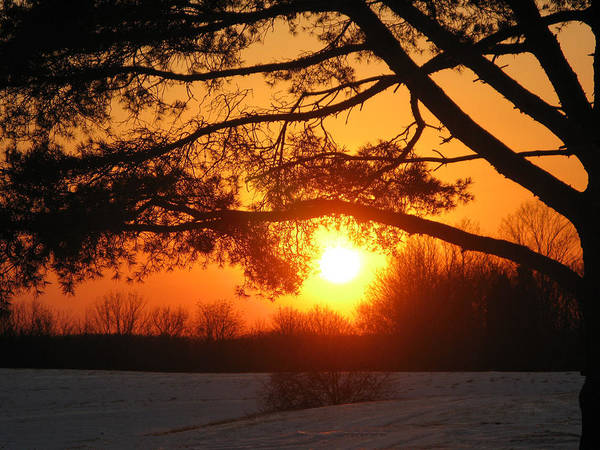 Sunset Art Print featuring the photograph Sunset In Rising Sun by Martie DAndrea