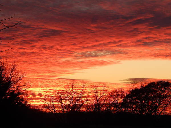 Sunset Art Print featuring the photograph Sunset Magic by Diana West