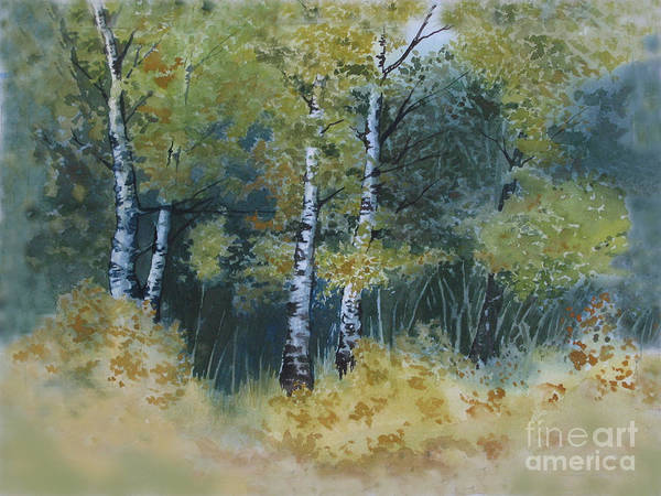 Birch Trees Art Print featuring the painting Surrounded By Greenery by Diane Ellingham