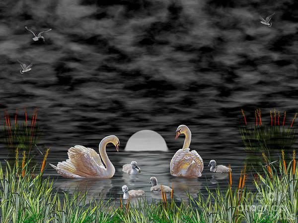 Swan Art Print featuring the digital art Swan Family by Terri Mills