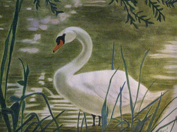 Swan Art Print featuring the painting Swanlike Neck by Barbara Pascal