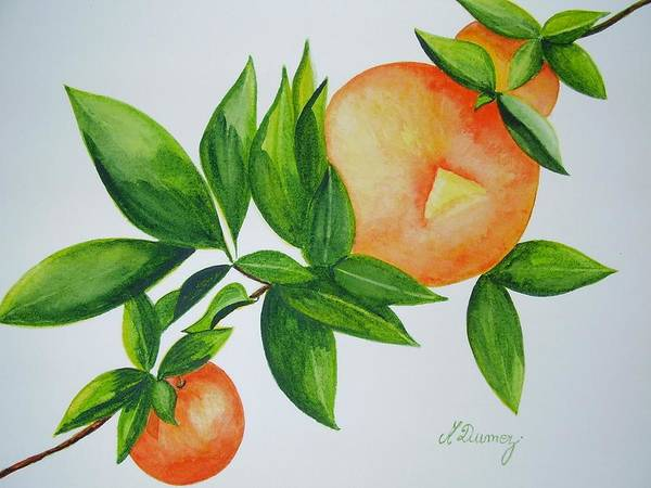Fruits Art Print featuring the painting Sweet by Murielle Hebert