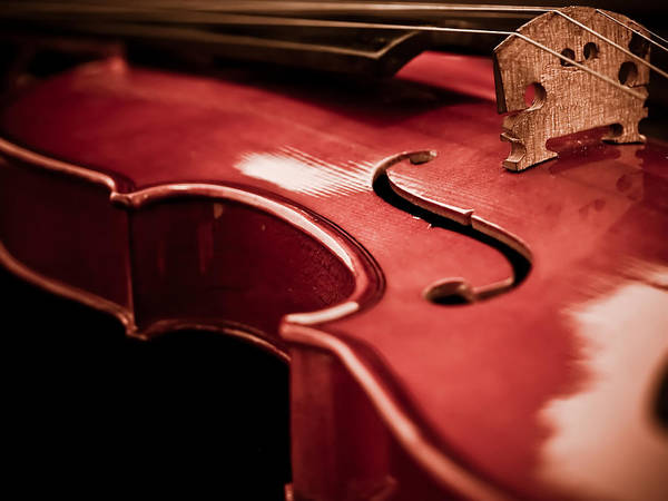 Violin Art Print featuring the photograph Symphony Of Strings by Valerie Morrison