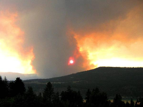 Forest Fire Art Print featuring the photograph Terrace Mountain Fire 3 by Will Borden