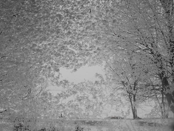 Landscape Art Print featuring the photograph The Clearing by John Kuti