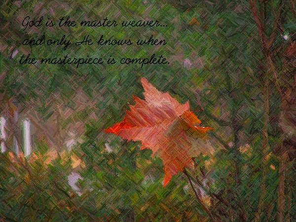 Leaf Art Print featuring the photograph The Master Weaver by Judy Waller