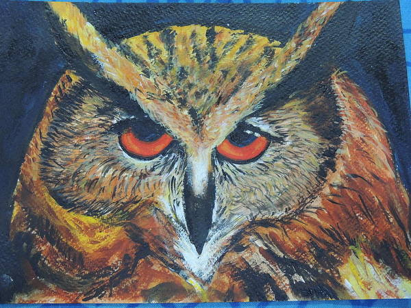 Art Print featuring the photograph The Night Owl by Sushma Bengani