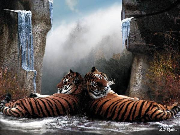 Tigers Art Print featuring the digital art The Pass by Bill Stephens