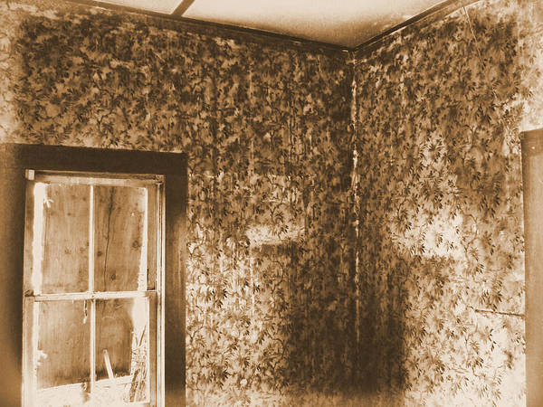Abandoned Rustic Old Haunted Ghostly Scary Art Print featuring the photograph The Sitting Room by Tingy Wende