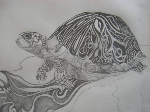 Water Art Print featuring the drawing The Turtle by Theodora Dimitrijevic