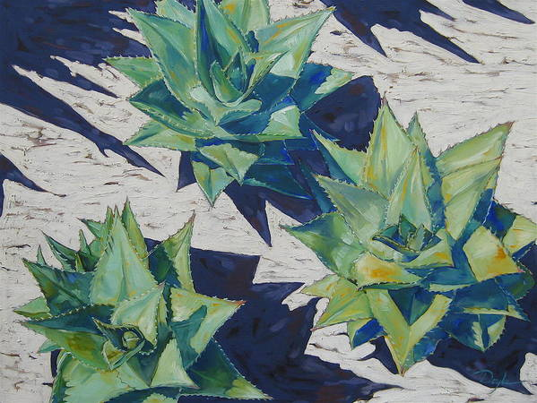 Botanical Art Print featuring the painting Three Aloe by Karen Doyle