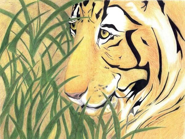 Tiger Art Print featuring the drawing Tiger Traveler - Www.jennifer-d-art.com by Jennifer Skalecke