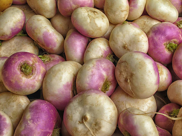 Turnips Art Print featuring the photograph Turnips by Dave Mills
