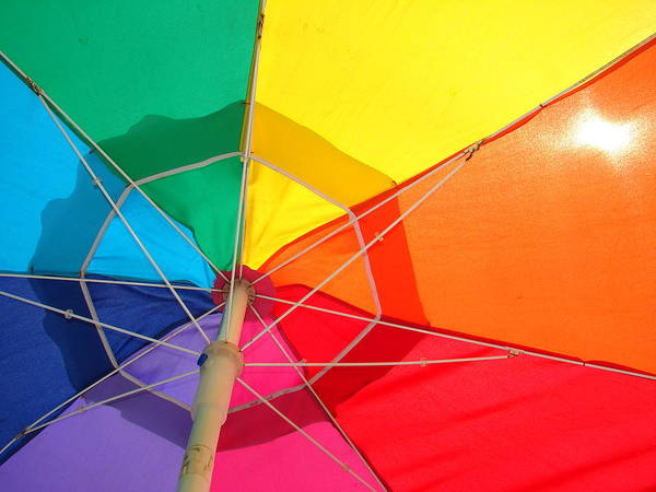 Umbrella Art Print featuring the photograph Umbrella In Sunlight by Gregory Smith