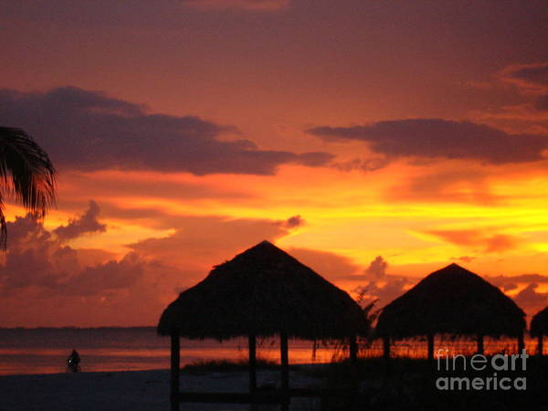 Sunset Art Print featuring the photograph Untouched by Robyn Leakey