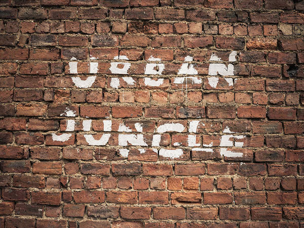 Concept Art Print featuring the photograph Urban Jungle by Mr Doomits