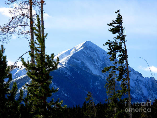 Mountain Art Print featuring the photograph View From The Top by PJ Cloud