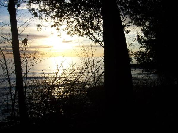 Washington Island Art Print featuring the photograph Washington Island Morning 1 by Anita Burgermeister