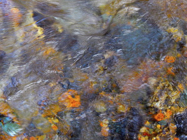 Colorful Water Art Art Print featuring the photograph Water Whimsy 177 by George Ramos