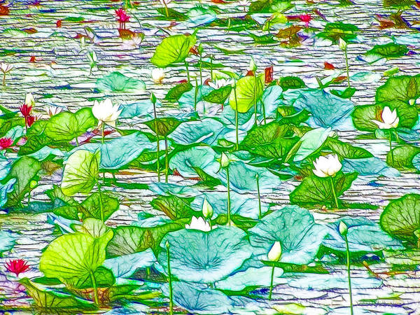 Pink Lotus Flower Art Print featuring the painting Waterlily Blossoms On The Protected Forest Lake by Jeelan Clark