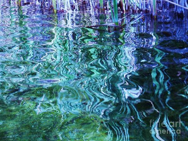 Photograph Blue Green Weed Shadow Lake Water Art Print featuring the photograph Weed Shadows by Seon-Jeong Kim