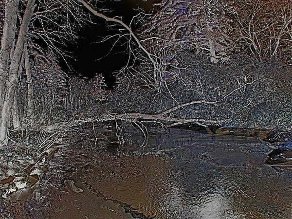 Winter Art Print featuring the photograph White Night by Peter Gray