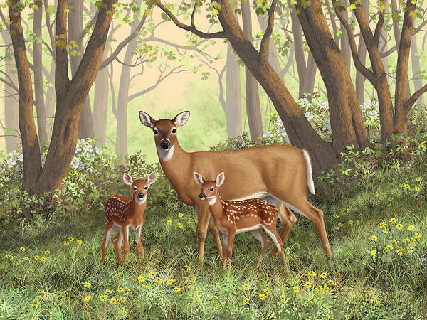 Whitetail Deer Print featuring the painting Whitetail Doe And Fawns - Mom's Little Spring Blossoms by Crista Forest